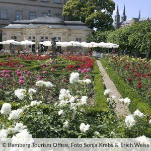Rosengarten in Bamberg